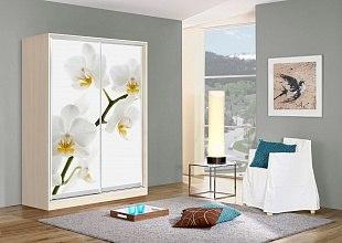 Шкаф-купе Оскар Орхидеи 1